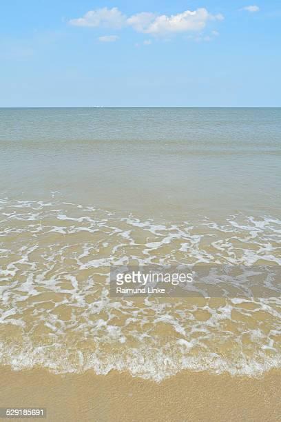 Beach in Summer