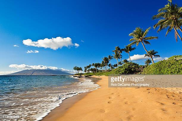 Beach in Wailea, Maui