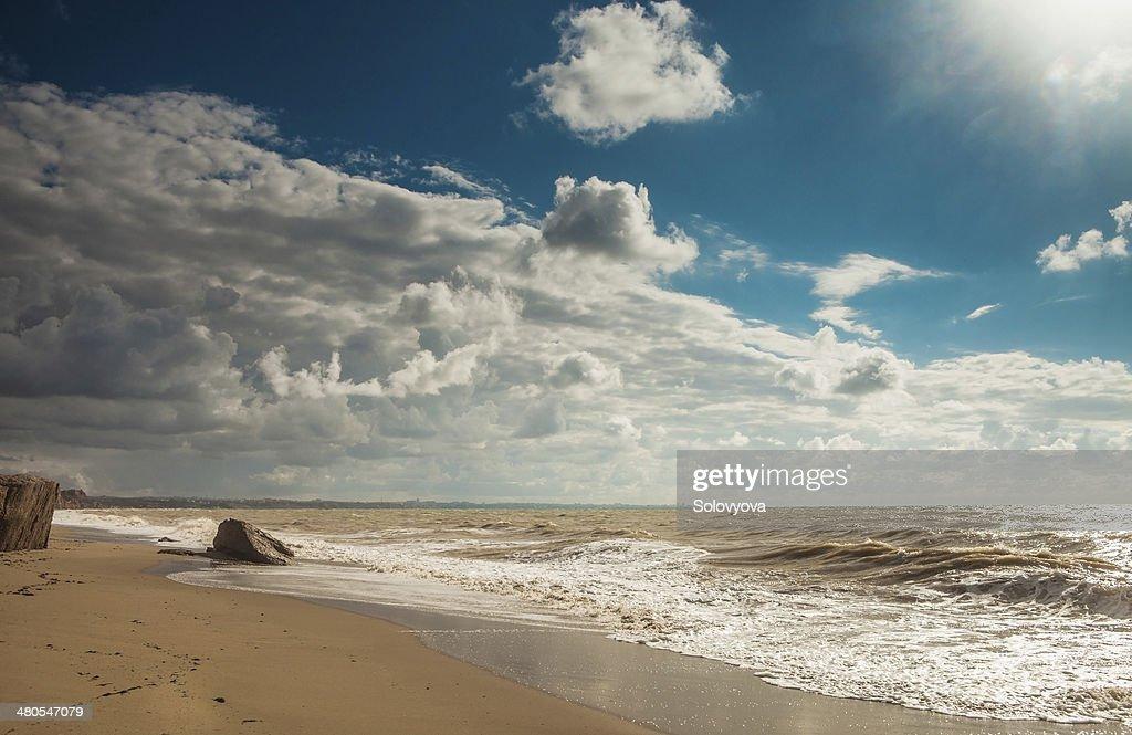 Paisagem de Praia em dia de tempestade : Foto de stock