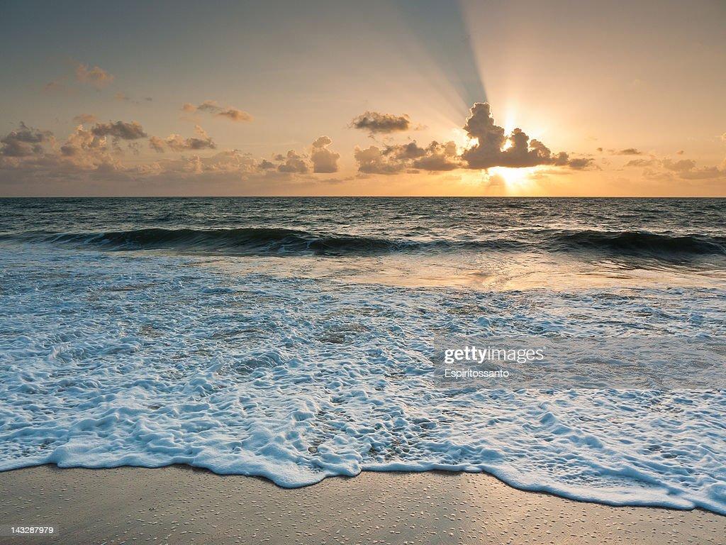 Beach morning : Stock Photo