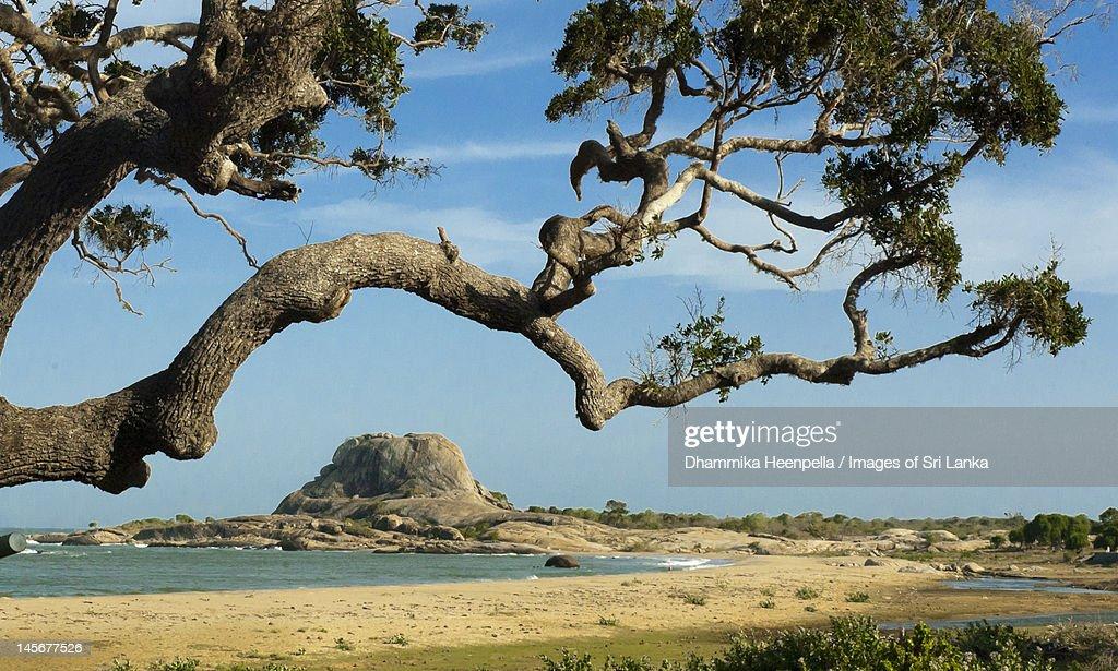 Beach near landmark Patanangala rock