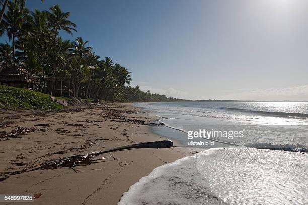 Beach of Pacific Harbour Beqa Lagoon Viti Levu Fiji