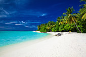Amazing beach on a tropical island with palm trees overhanging lagoon