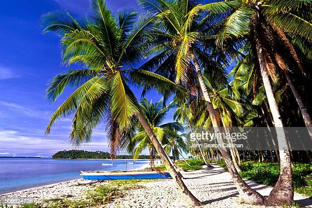 Beach on Mamon Island