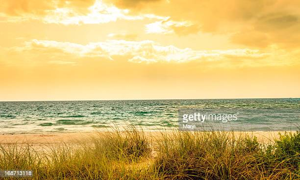 Beach on Stormy Day - Golden Vintage Colors
