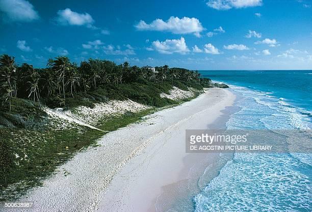 Beach on the east coast Barbados