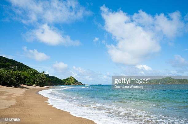 Beach on Tobago's North Coast