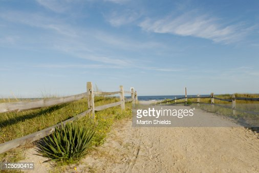 Beach path : Stock Photo
