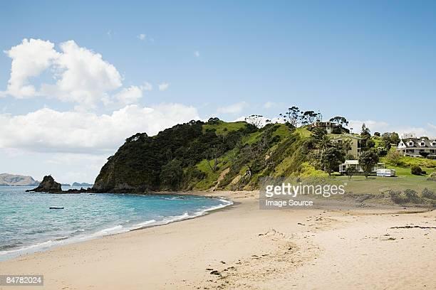 Beach russell north island
