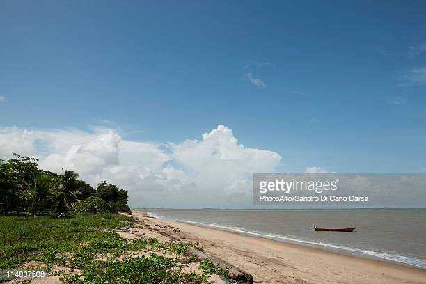 Beach scene, Amazonia, French Guiana, South America