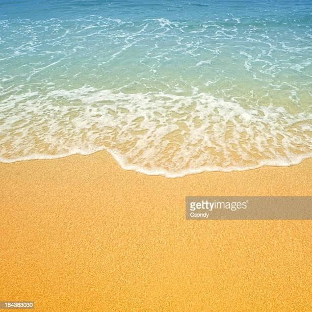 Plage tropicale et la mer