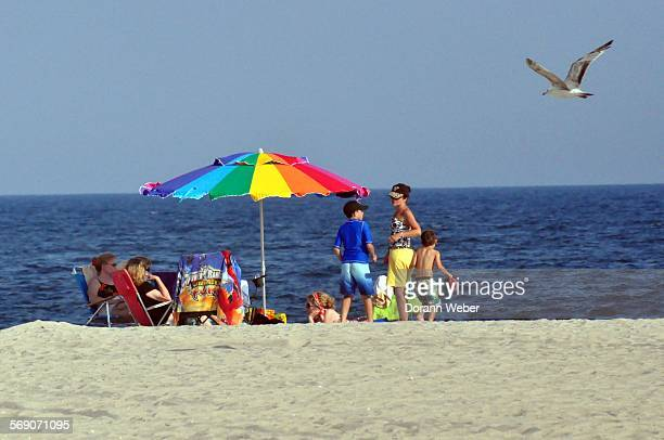 Beach scene with brightly colored umbrella family and flying seagull