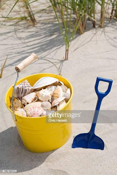 Beach shovel and pail of shells