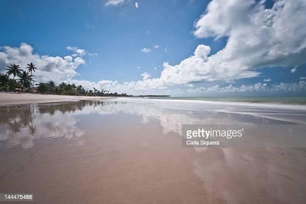 Beach Tamandare