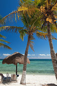 Beach umbrella and palm trees, Akumal, Mexico
