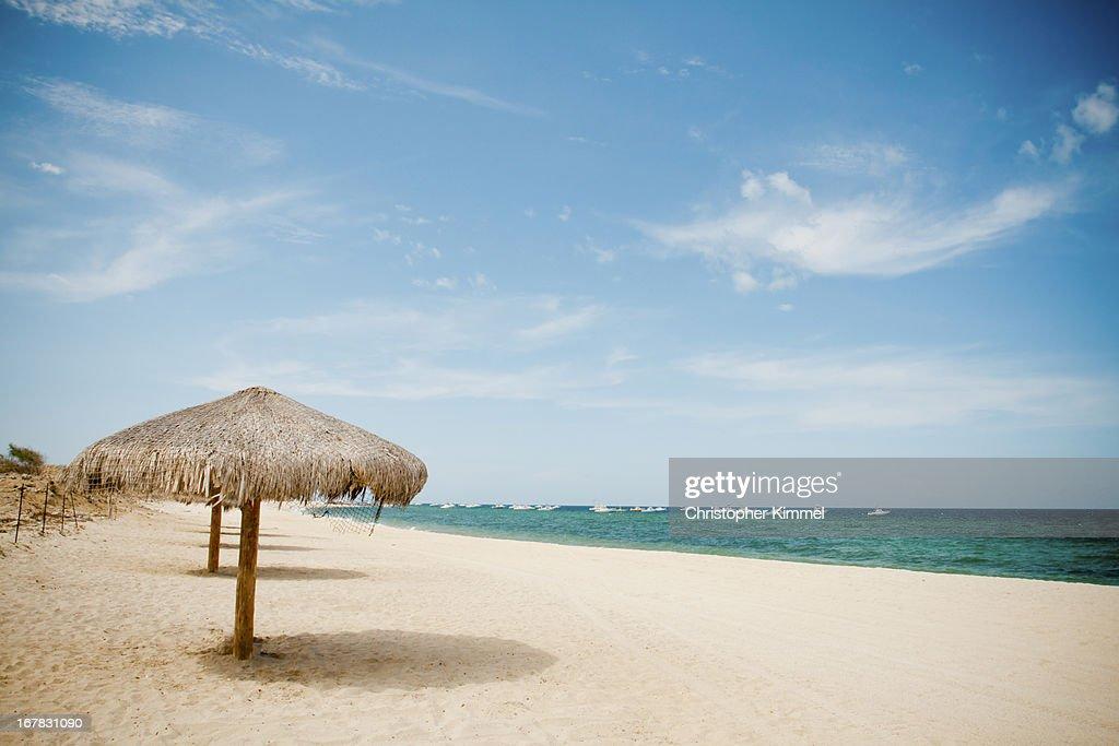 Beach umbrella : Stock Photo