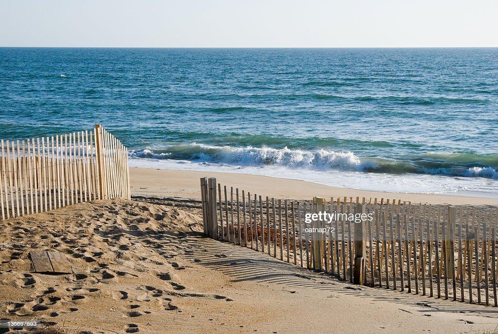 Beach Waves Breaking in Morning Light