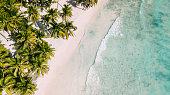 Beach with beautiful coastline. Palm trees and blue sea
