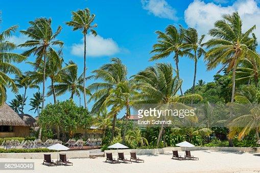 Beach with palm trees, Bora Bora, French Polynesia