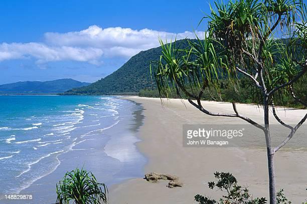 Beaches and rainforest of Cape Tribulation.