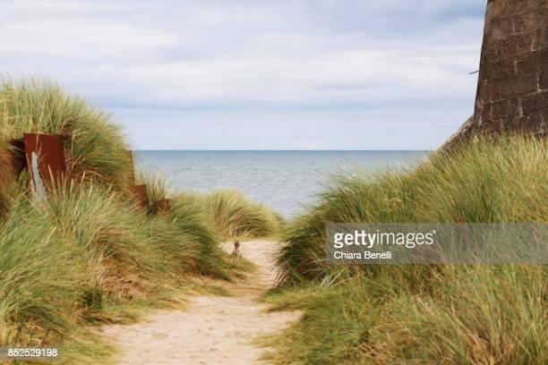 Beaches of the Normandy landings- JUNO Beach