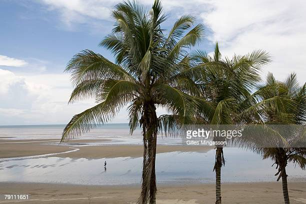 A beachgoer enjoys unlimited access to her own private beach on a deserted seaside near Guarare in the Azuero peninsula Panama June 17 2006