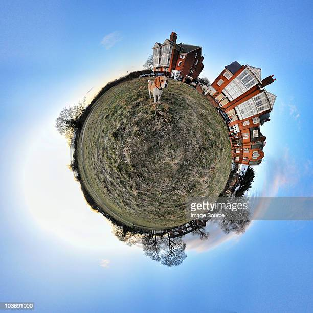 Beagle and houses with little planet effect