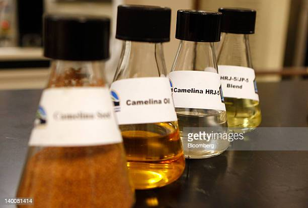 Beakers containing camelina seed camelina oil camelinabased biofuel and a blend of camelinabased biofuel and jet fuel are arranged for a photo at the...
