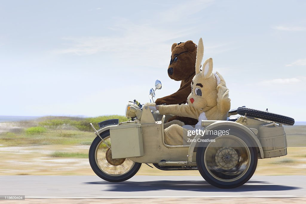Bear and bunny riding a motorbike : Stock Photo