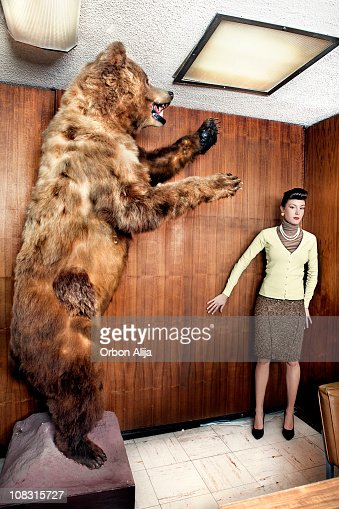 Bear at the office : Stock Photo