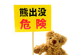 A stuffed animal of bear has 'bear infestation! Danger' and a written board.