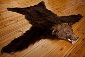 A bear skin rug on wooden floorboards