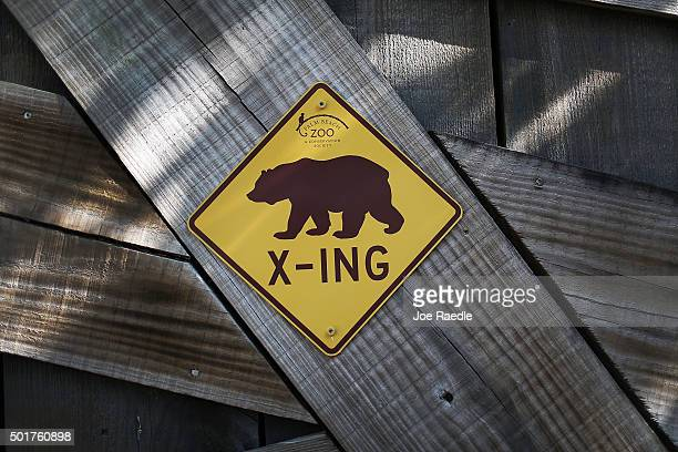 A bear Xing sign hangs near where two grizzly bear cubs enjoy their first day out in the public at the Palm Beach Zoo on December 17 2015 in West...