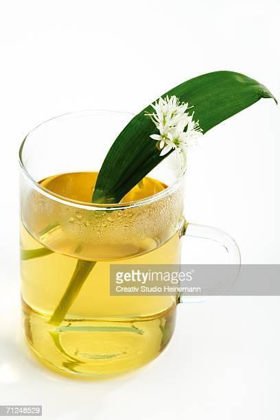 Bear's garlic with herbal tea