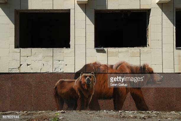 Bears painted by a graffiti artist adorn the facade of an abandoned cultural center in the ghost town of Pripyat not far from the Chernobyl nuclear...