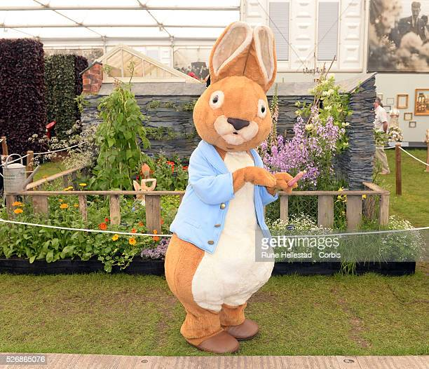 A Beatrix Potter character at The 'Chelsea Flower Show' at the Chelsea Hospital Grounds