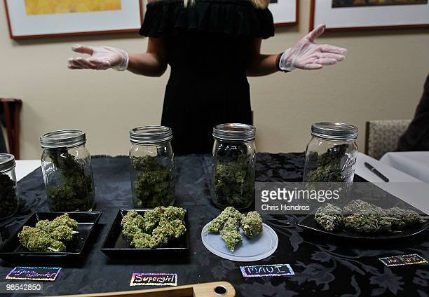 Beatriz HerreraRodden shows off some of her marijuana samples at the Cannabis Crown 2010 expo April 18 2010 in Aspen Colorado HerreraRodden runs...
