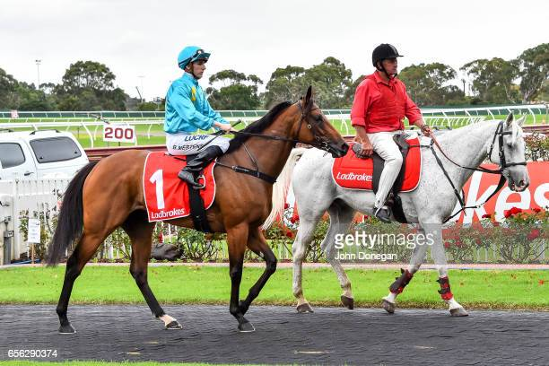 Beau Mertens returns to the mounting yard aboard Single Note after winning the Elaren Security Services Handicap at Ladbrokes Park Hillside...