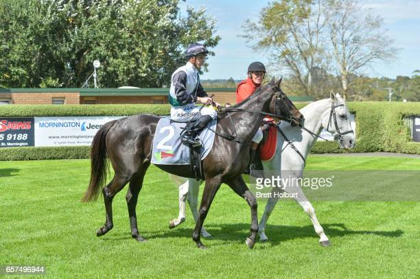 Beau Mertens returns to the mounting yard aboard Sullivan Bay after winning the No Fuss Event Hire Handicap at Mornington Racecourse on March 25 2017...