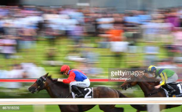 Beau Mertens riding Hokkaido winning Race 5 during Ladbrokes Peninsula Cup Day at Mornington Racecourse on March 25 2017 in Melbourne Australia