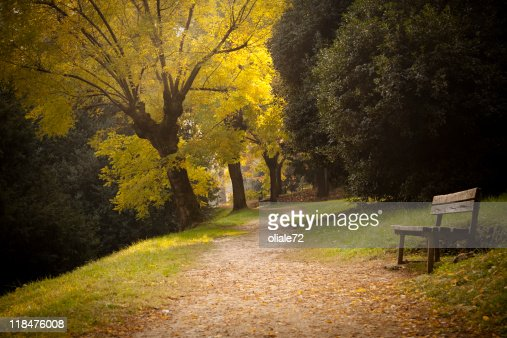 Beautiful and quite park with warm autumn color