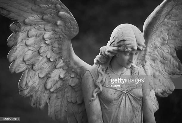 Bellissimo angelo
