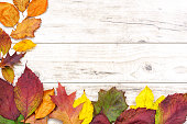 Beautiful autumn background - multicolored colored leaves on a wooden table with copy place.