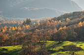 Stunning Autumn Fall landscape image of the view from Catbells in the Lake District with vibrant Fall colors being hit by the late afternoon sun