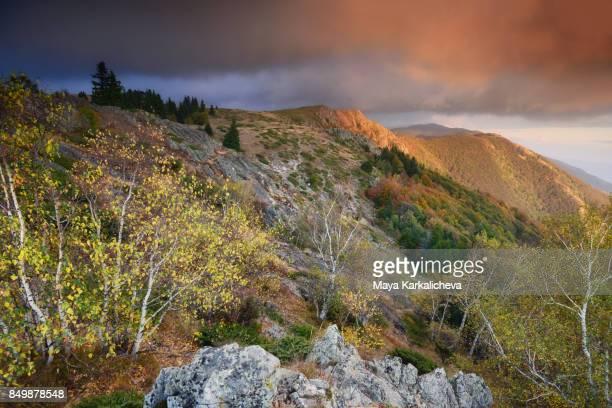 Beautiful autumn mountain scnenery