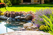 Beautiful backyard landscape design. View of colorful trees and decorative trimmed bushes and rocks