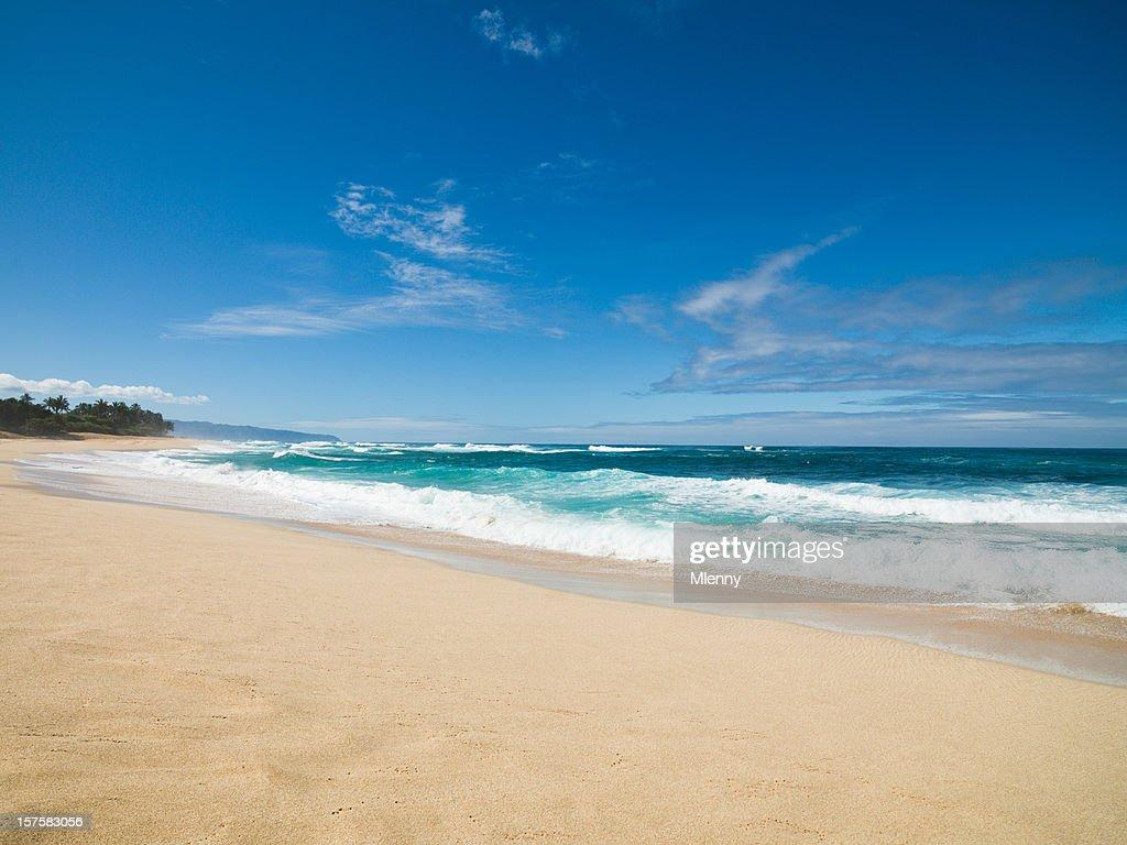 Beautiful Beach Hawaii : Stock Photo