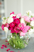 beautiful bouquet of pink and white ranunculus flowers in a glass vase