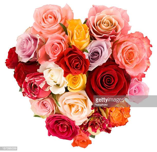 Schönen Strauß Rosen