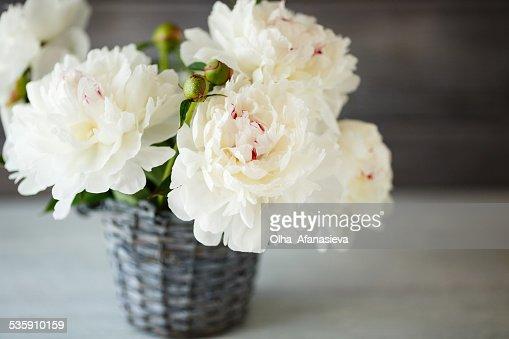 Belo bouquet de branco peonies : Foto de stock